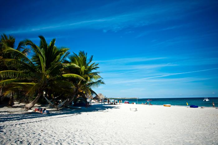 Sweet-Caribbean-Photo-5