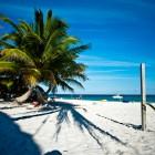 playa del carmen violence   cancun is safe